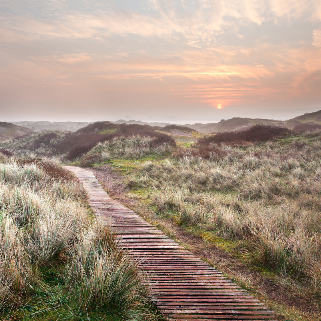 The boardwalk on Braunton Burrows near Longlands