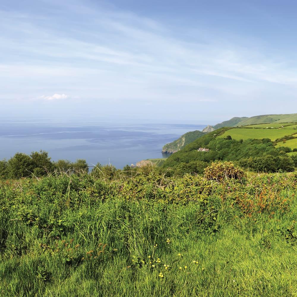 Coastal Walks near Longlands Glamping