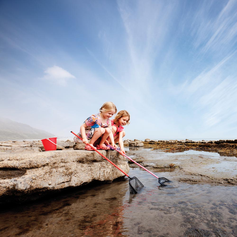 Enjoy rockpooling at Beaches near Longlands glamping
