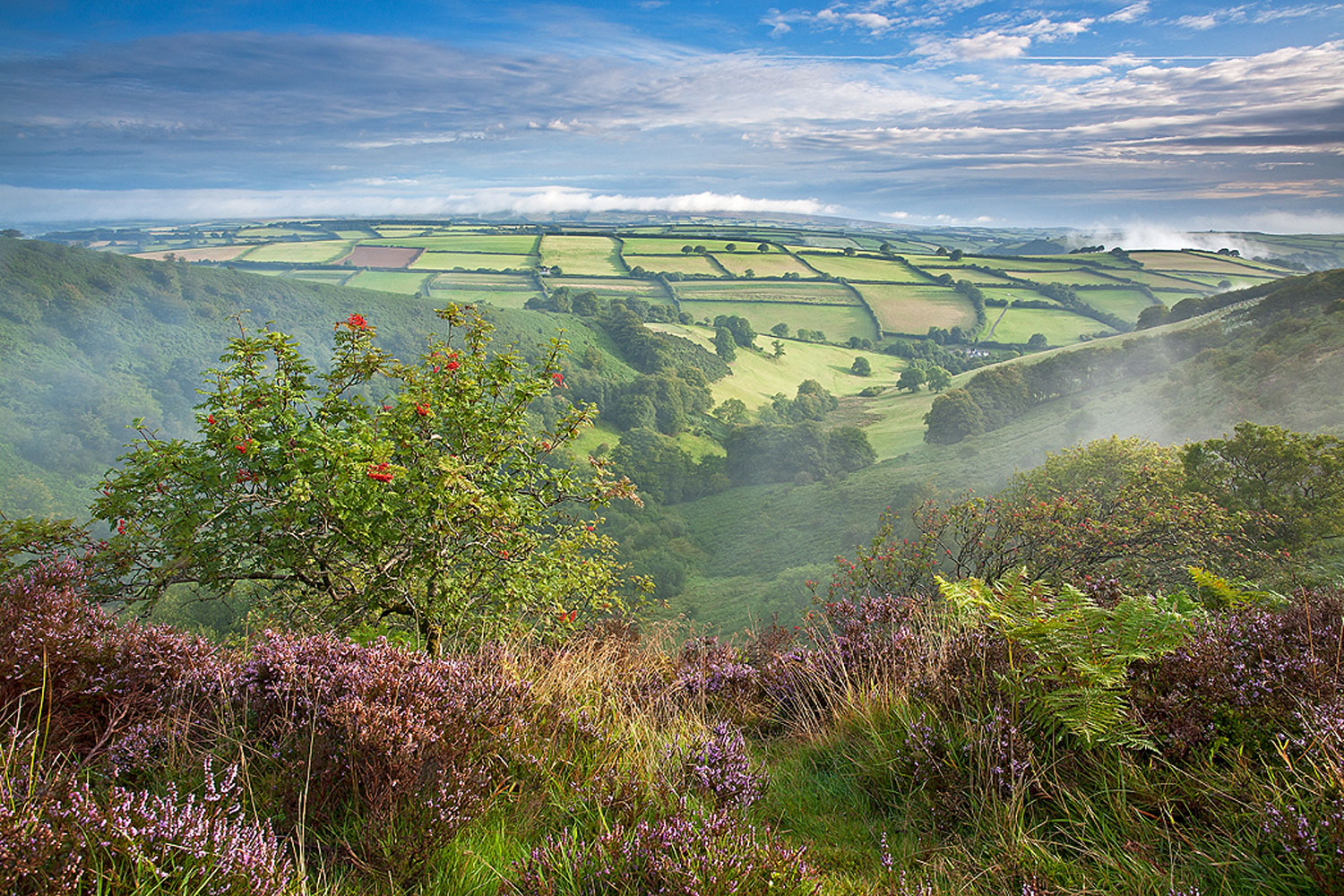 Longland's location is amongst the beautiful exmoor national park