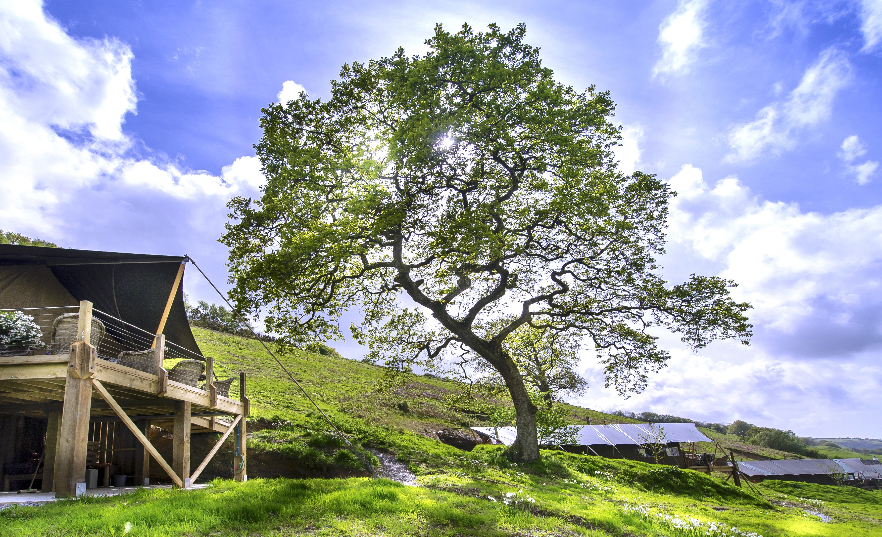 Longlands luxury glamping in Spring.
