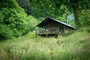 Luxury UK Safari Lodge at Longlands Glamping Devon